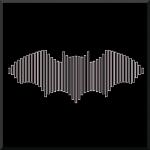 Bat Survey
